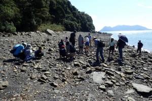 地層と化石