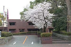 熊本県伝統工芸館の写真