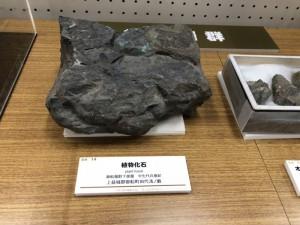 移動展示「くまもとの地質」(2)